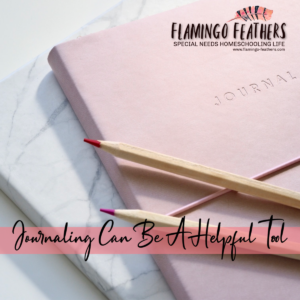 flamingo feathers podcast episode 3 summer planning