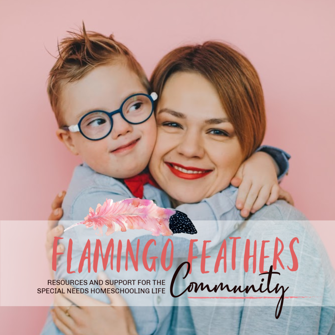 Flamingo Feathers support for special needs homeschooling