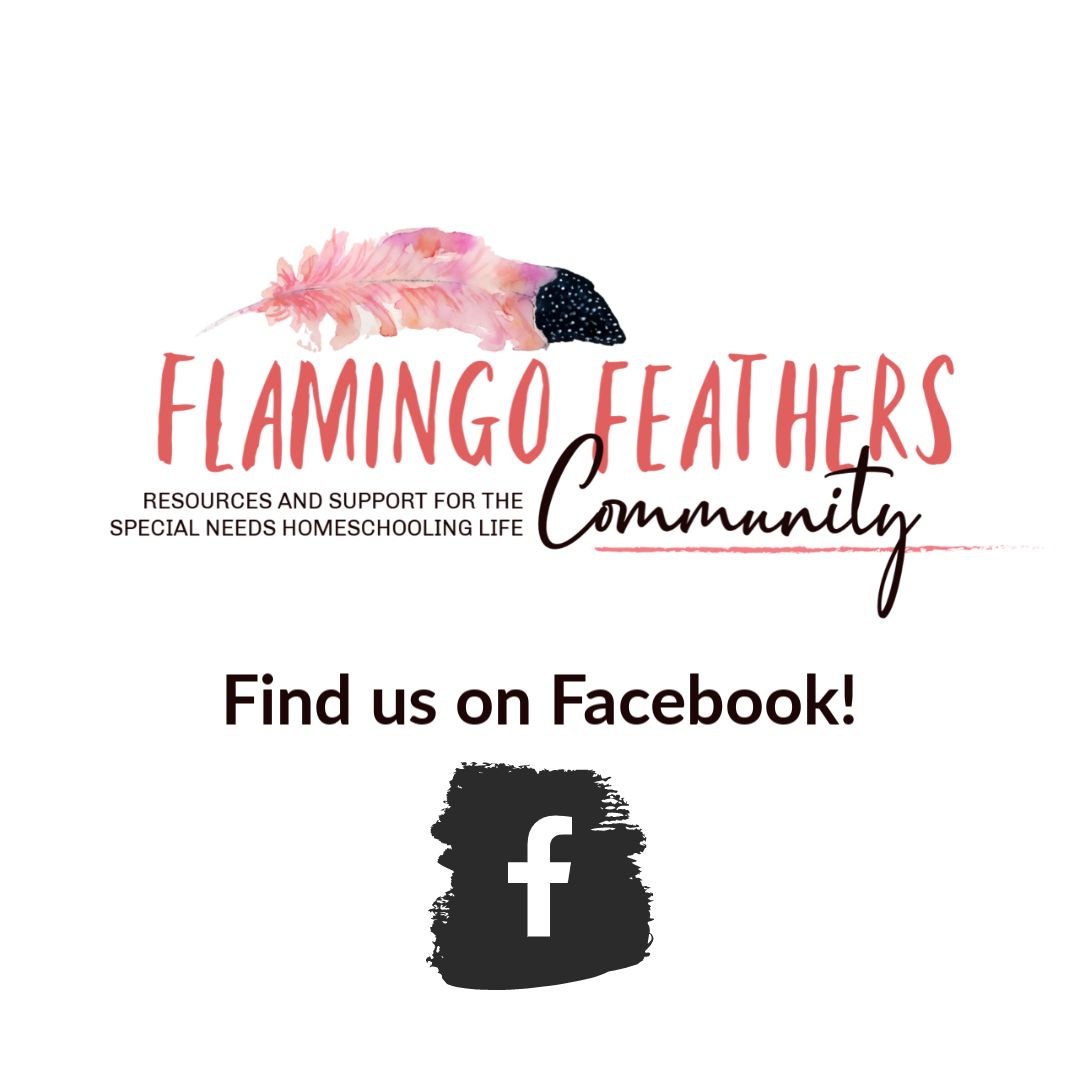 Flamingo Feathers facebook group for special needs homeschoolers