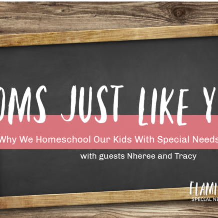 Flamingo Feathers Podcast interview with moms just like you who are homeschooling their kids with special needs