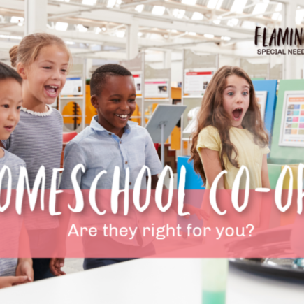 Are Homeschool Co-ops Right for You? Episode 5 Flamingo Feathers Podcast for Special Needs Homeschooling