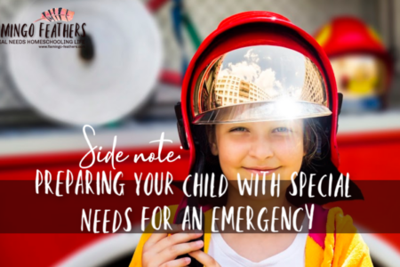 Preparing Your Child With Special Needs For An Emergency Situation, Flamingo Feathers Podcast Episode 6, How to teach kids with autism and cognitive disabilities to be safe in an emergency