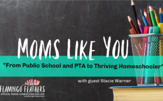 Moms Like You: From Public School and PTA to Thriving Homeschooler, Flamingo Feathers Podcast Episode 8, Special Needs Homeschooling Life, Stacie shares why she homeschools her child with Dyspraxia