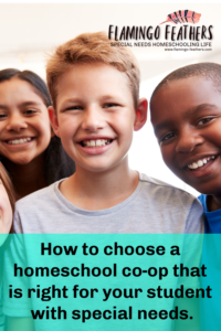 How to choose a homeschool co-op for your child with special needs. Flamingo Feathers podcast episode 5
