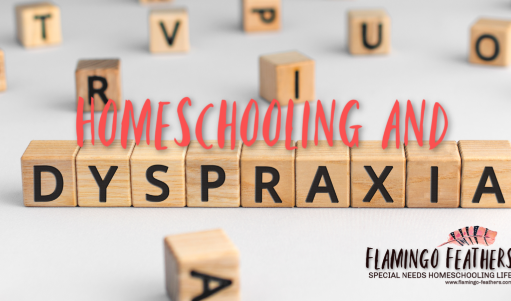 Homeschooling and Dyspraxia, Homeschooling children with learning disabilities and embodied learning needs, Flamingo Feathers podcast episode 9, special needs homeschooling