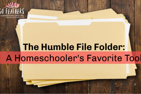 How to turn inexpensive file folders into games and lapbooks for your homeschool. Flamingo Feathers Podcast for special needs homeschooling.