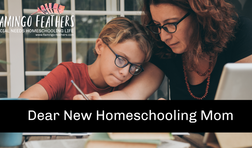 Dear New Homeschooling Mom, Advice for moms new to special needs homeschooling, Flamingo Feathers Podcast episode 11