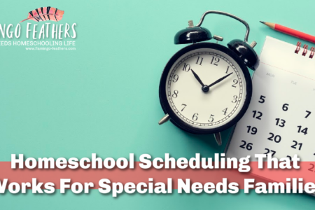 Time Blocking: The Homeschool Scheduling that actually works for special needs families, Flamingo Feathers Podcast for special needs homeschooling. Episode 17