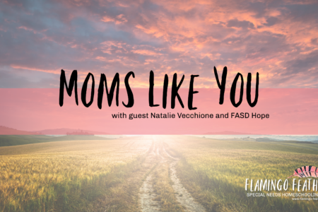 Moms Like You FASD Hope