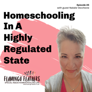 Homeschooling In a highly regulated state