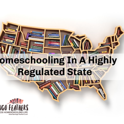 Homeschooling In A Highly Regulated State, Flamingo Feathers Podcast, Special Needs Homeschooling Life